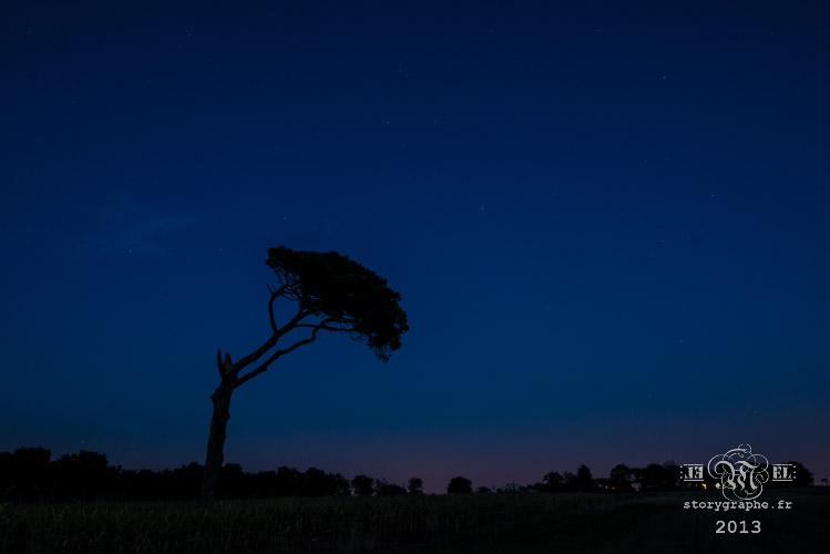 MiNuit Ma nuit_13-09-24